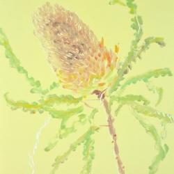 Banksia 2017, monoprint