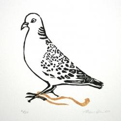 Turtle dove2008
