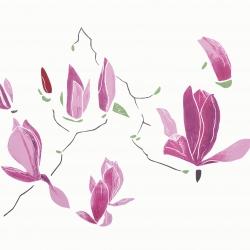 Oh, magnolia!