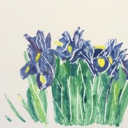 Irises 2, 2019 monotype 28x38.5 cm