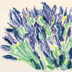 Irises 1, 2019, monotype 28x35.5 cm